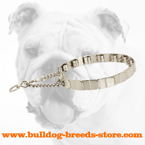 Stainless Steel Dog Pinch Collar for Bulldogs with Metal Links