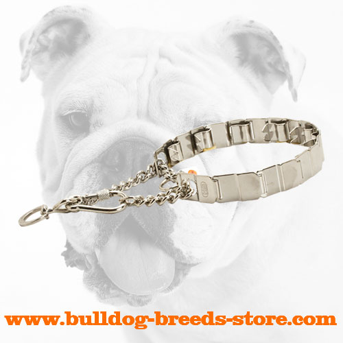 Training Stainless Steel Dog Pinch Collar for Bulldogs