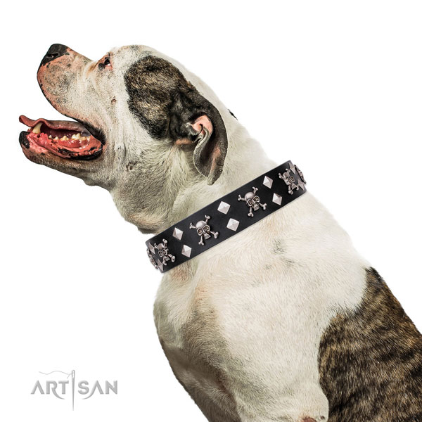 Bulldog inimitable genuine leather dog collar for easy wearing