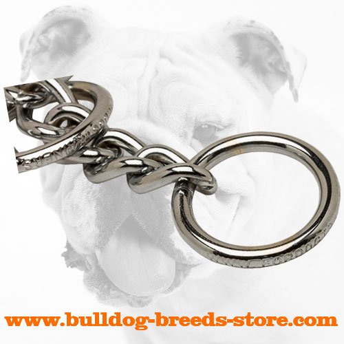 Strong O-ring on Chrome Plated Bulldog Choke Collar