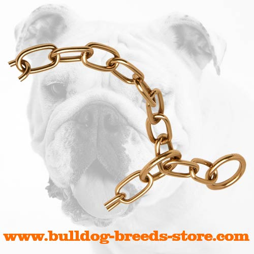 Curogan Bulldog Fur Saver fo Walking