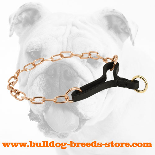 Durable Curogan Martingale Bulldog Collar with Long Fur Saving Links