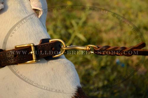 High Quality D-Ring on Braided Leather Bulldog Collar