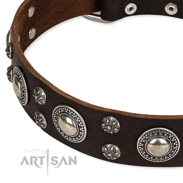 Easy to adjust leather dog collar with resistant to tear and wear durable fittings