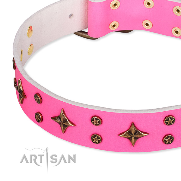 Full grain natural leather dog collar with unusual adornments
