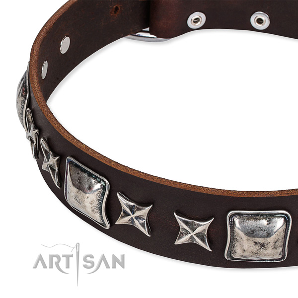 Leather dog collar with adornments for walking