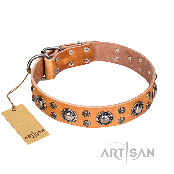 Unique leather dog collar for handy use