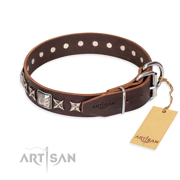 Stylish walking full grain leather collar with embellishments for your four-legged friend