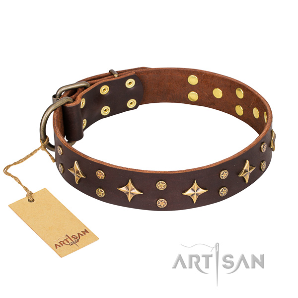 Incredible full grain leather dog collar for walking