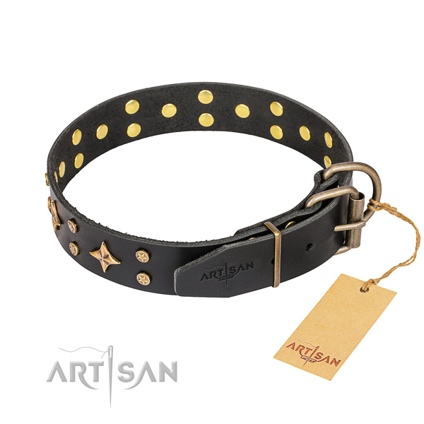 Everyday walking leather collar with embellishments for your canine