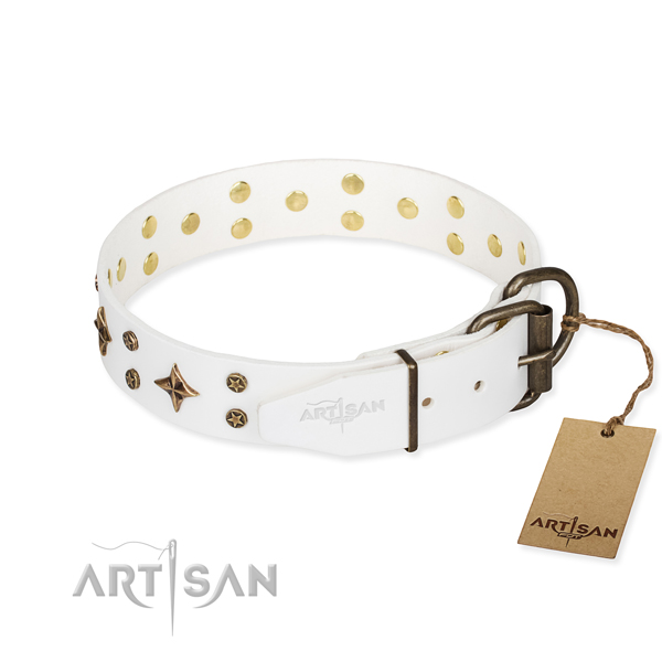 Stylish walking full grain leather collar with decorations for your doggie