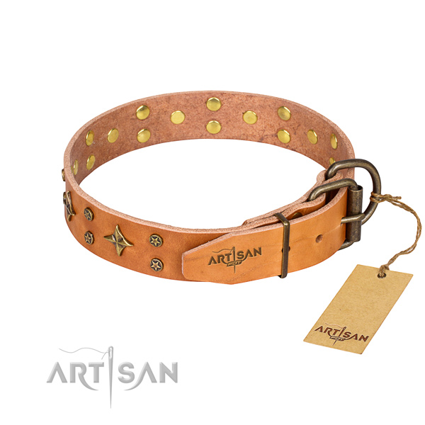 Daily use leather collar with adornments for your canine