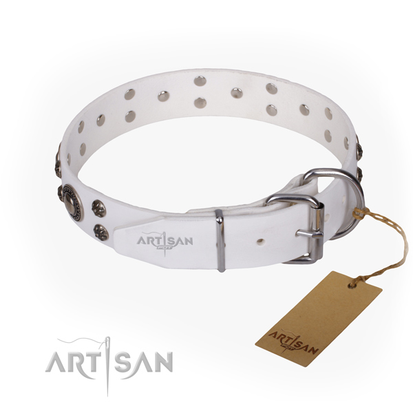 Daily use full grain genuine leather collar with embellishments for your doggie