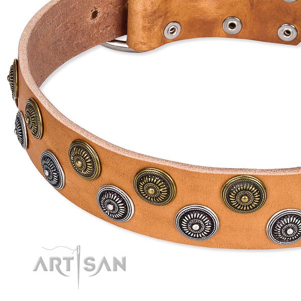 Genuine leather dog collar with fashionable studs