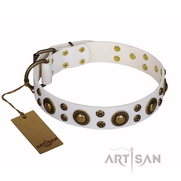 Walking genuine leather collar with embellishments for your doggie