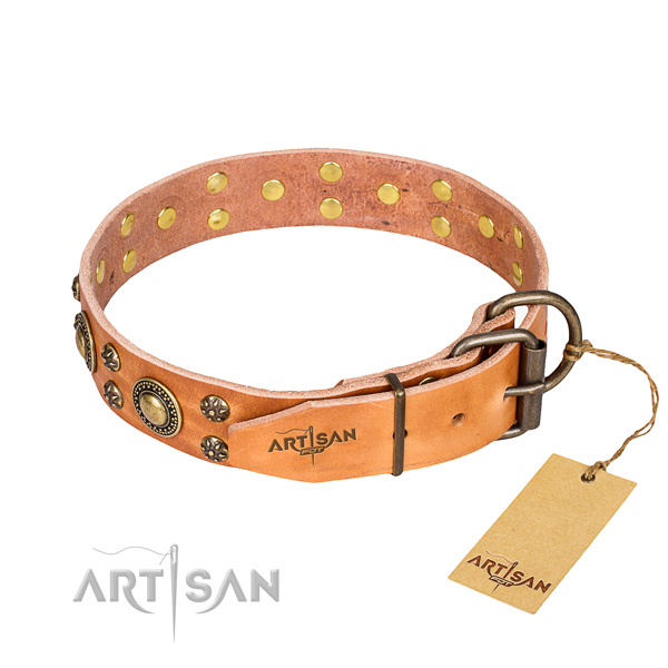 Daily walking natural genuine leather collar with studs for your four-legged friend