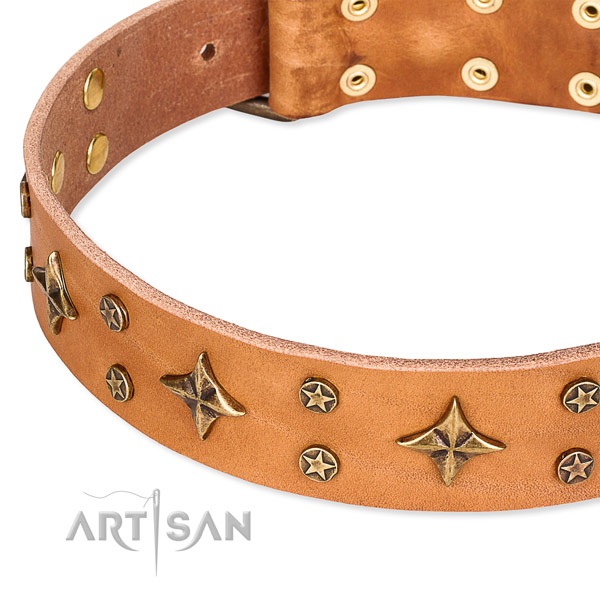 Full grain genuine leather dog collar with unique decorations