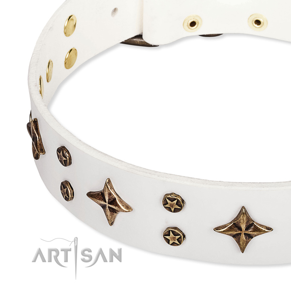 Full grain genuine leather dog collar with stunning embellishments
