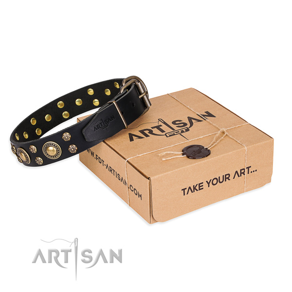 Fine quality full grain natural leather dog collar for stylish walking