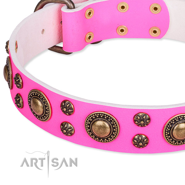Natural genuine leather dog collar with trendy embellishments
