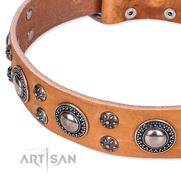 Daily walking leather collar with strong buckle and D-ring