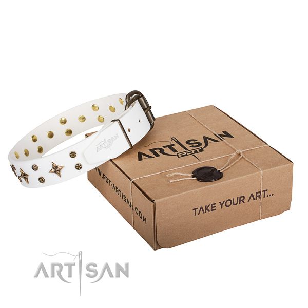 Adorned full grain leather dog collar for handy use