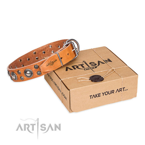Fine quality full grain leather dog collar for stylish walking