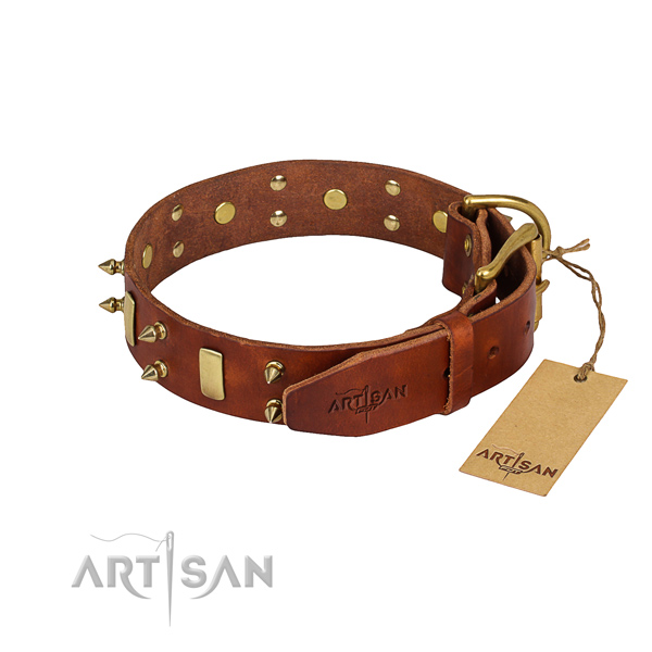 Strong leather dog collar with riveted elements
