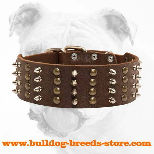 Spiked and Studded Walking Leather Dog Collar for Bulldog