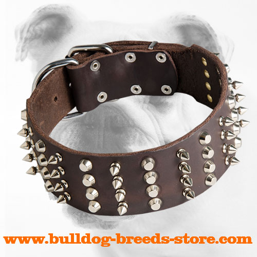 Lovely Training Leather Bulldog Collar with Spikes and Studs