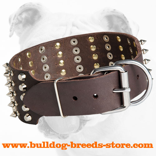Designer Wide Leather Bulldog Collar with Strong Buckle