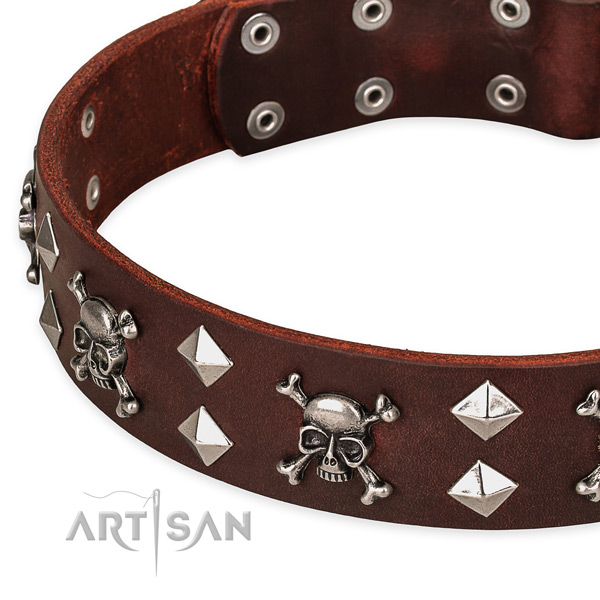 Top notch leather dog collar for walking