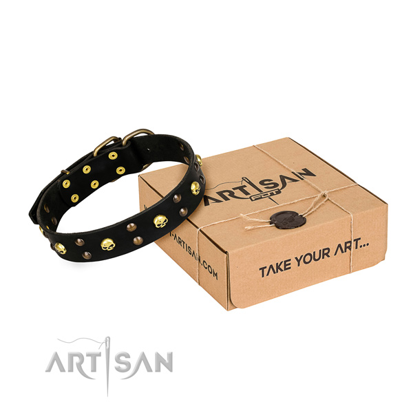 Daily leather dog collar with exceptional adornments