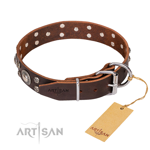 Genuine leather dog collar with thoroughly polished exterior