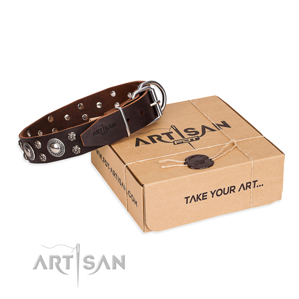 Everyday leather dog collar with sensational adornments