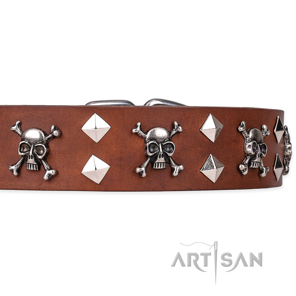Casual style leather dog collar with unique design studs