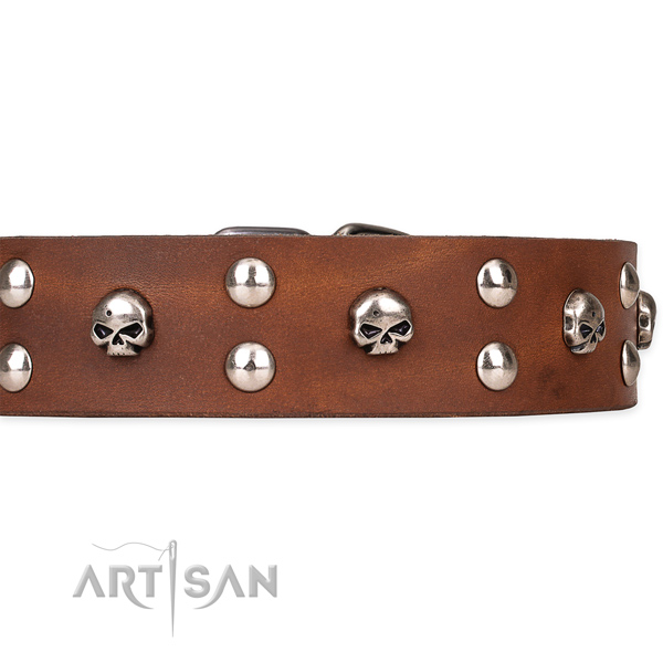 Genuine leather dog collar with polished exterior