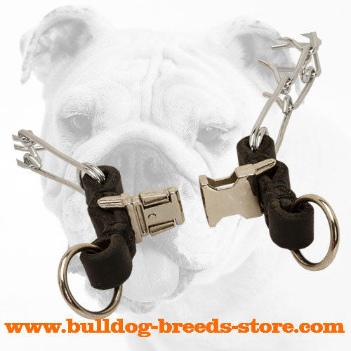 Strong Quick Release Buckle of Chrome Plated Steel Bulldog Prong Collar