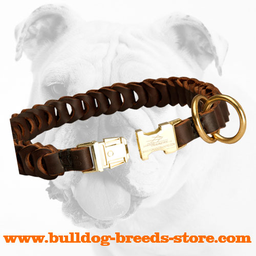 Strong Quick Release Buckle on Leather Bulldog Choke Collar