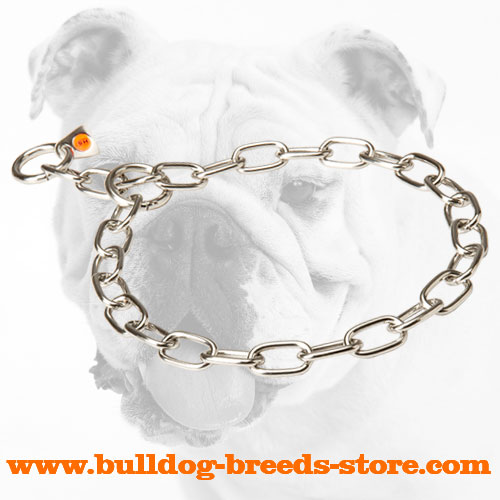 Stainless Steel Bulldog Fur Saver for Daily Activities