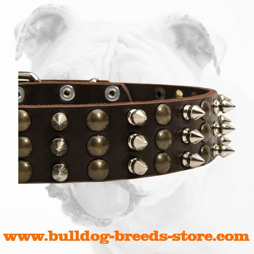 Spikes and Studs on Wide Fashion Leather Bulldog Collar for Handling