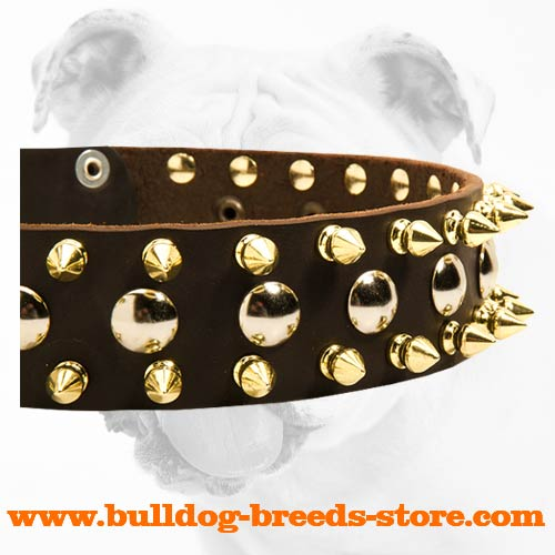 Spikes and Studs on Adjustable Walking Leather Bulldog Collar
