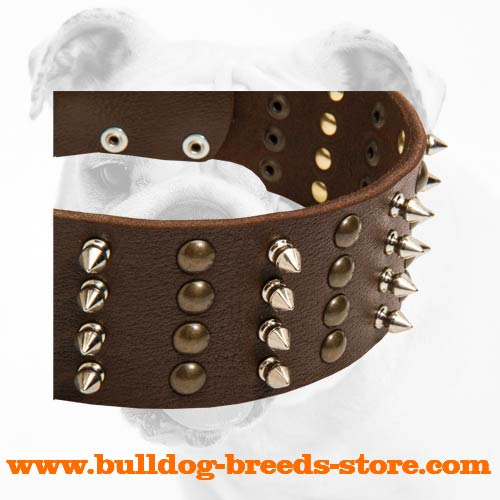 4 Rows of Spikes and Studs on Fashion Training Leather Bulldog Collar