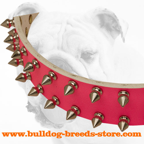 Nickel Spikes on Pink Fashion Walking Leather Bulldog Collar