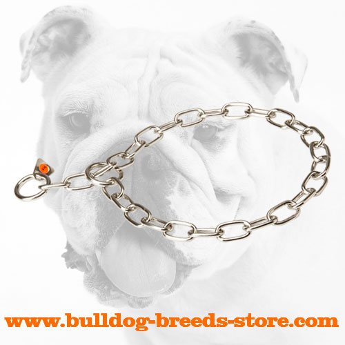 Training Stainless Steel Bulldog Fur Saver