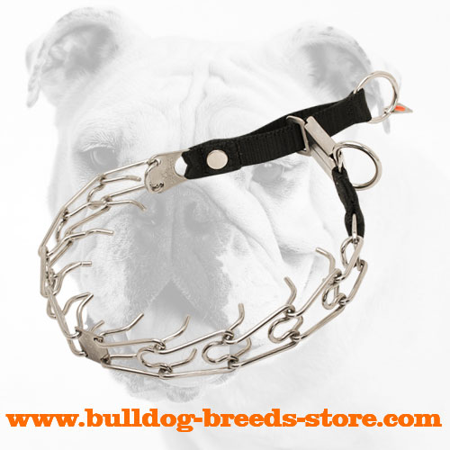 Stainless Steel Bulldog Pinch Collar with Click Lock Buckle