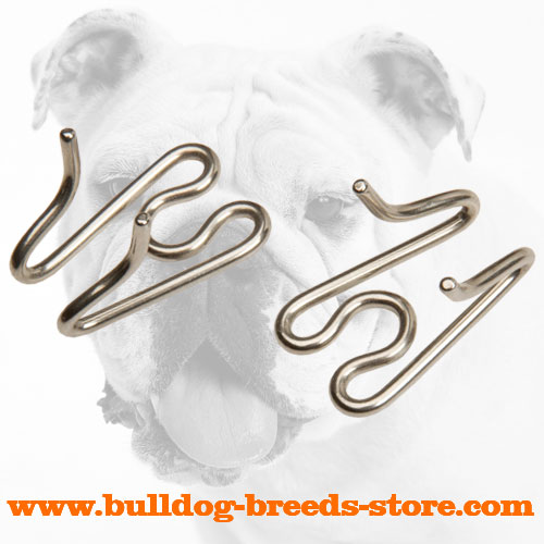 Rust Proof Stainless Steel Links for Bulldog Pinch Collar