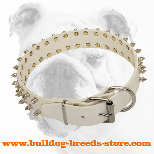Decorated Fashion Leather Bulldog Collar with Strong Buckle