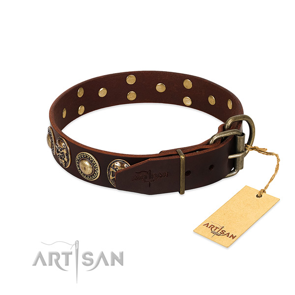 Daily walking natural genuine leather collar with adornments for your pet