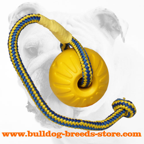 Colorful Bulldog Unsinkable Foam Ball